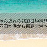 赤ちゃん連れの2泊3日沖縄旅行①〜羽田空港から那覇空港へ〜