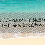 赤ちゃん連れの2泊3日沖縄旅行②〜1日目 美ら海水族館へ〜